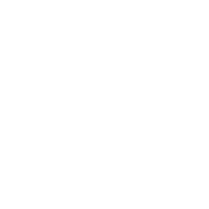 Bitcoin Gold BTG Icon White