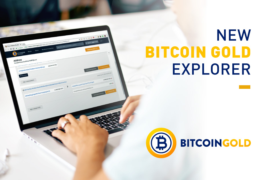The Bitcoin Gold Insight Explorer